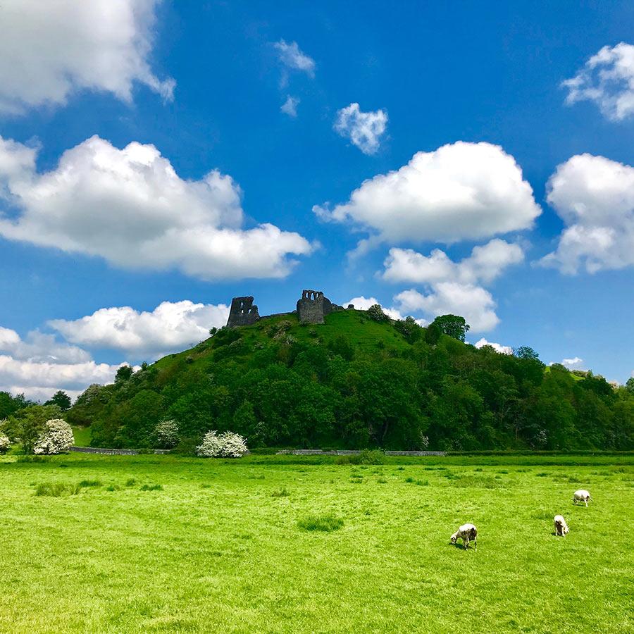 Dryslwyn Castle Cintec Anchoring